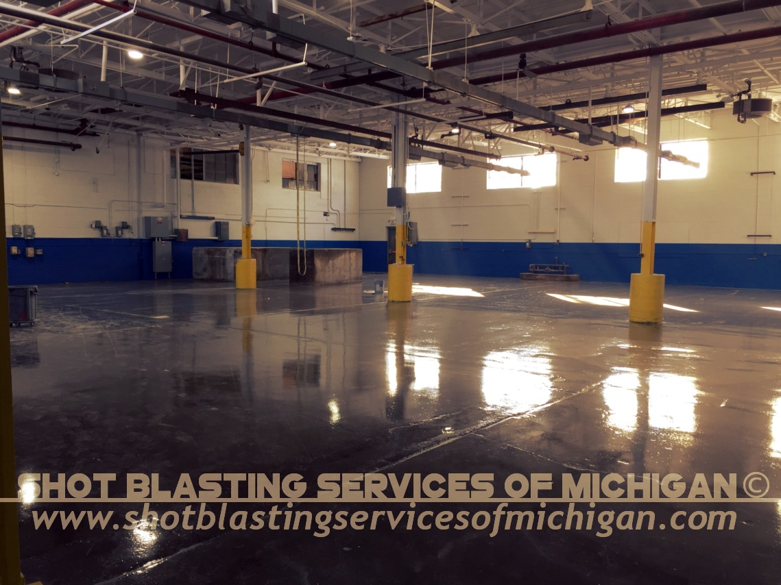 SBS Contracting Concrete Surface Coatings 28